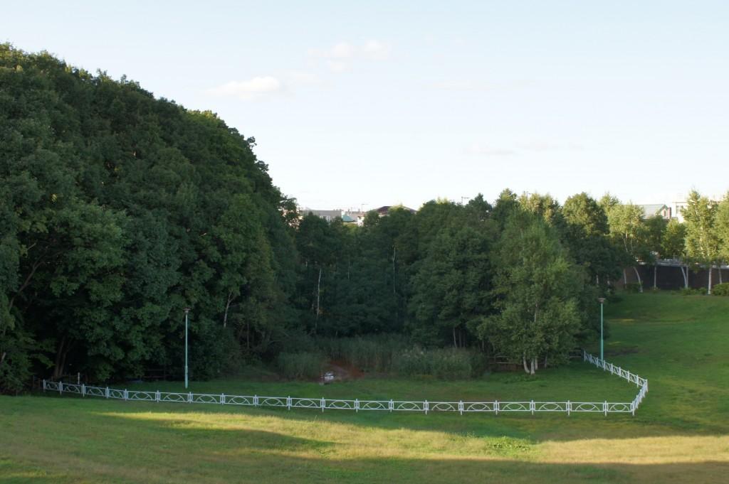 水芭蕉公園と呼ばれていた気が 1/125 f8 ISO200